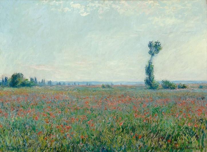 Poppy Field by Claude Monet, 1881